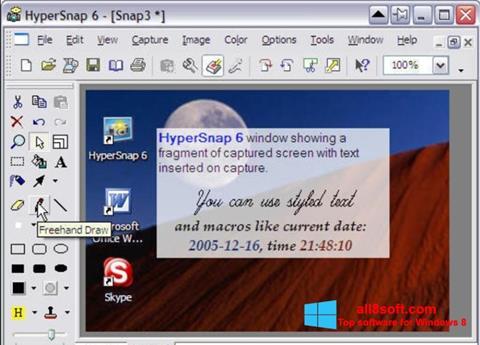 Ảnh chụp màn hình HyperSnap cho Windows 8