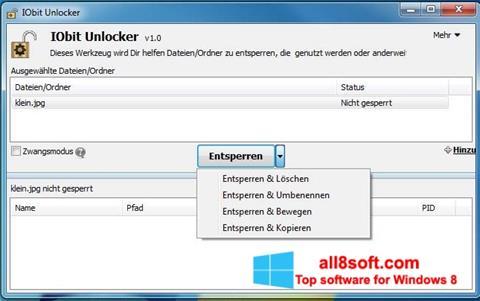 Ảnh chụp màn hình IObit Unlocker cho Windows 8