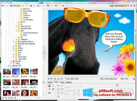 Ảnh chụp màn hình PhotoScape cho Windows 8
