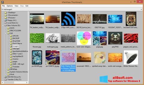 Ảnh chụp màn hình IrfanView cho Windows 8