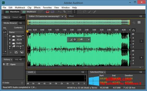 Ảnh chụp màn hình Adobe Audition CC cho Windows 8